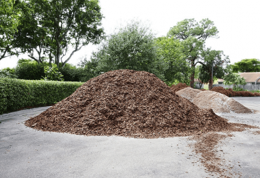 Best Mulch For Trees And Shrubs