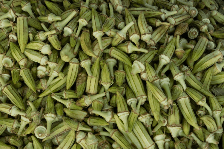 When to Plant Okra in Arkansas
