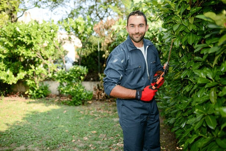 How to Sharpen Pruning Loppers