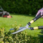 pruning lopper reviews