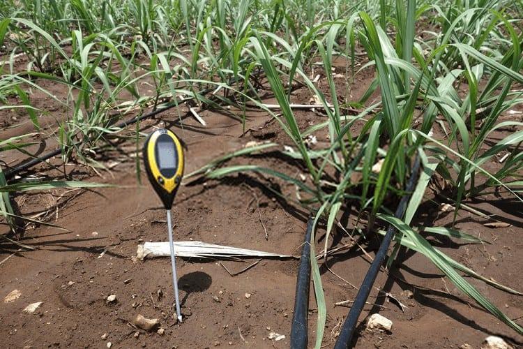 soil moisture checking tool