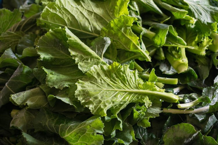How to Harvest Turnip Greens