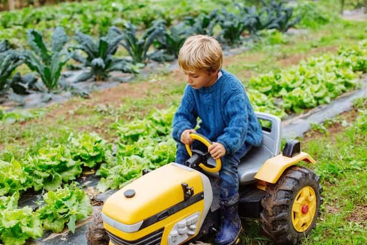 Types of Garden Tractor