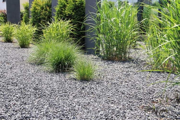 How to Stop Grass From Growing In Gravel