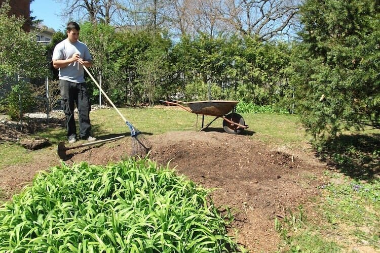 how to kill grass in vegetable garden