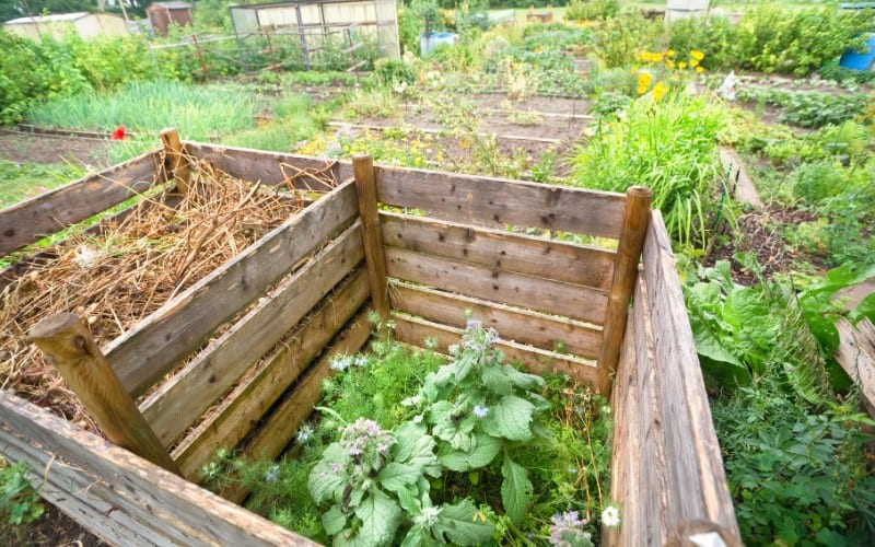 what is compost pile