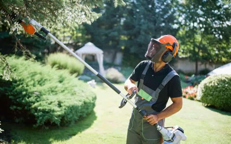 Pole Saw Vs Hedge Trimmer