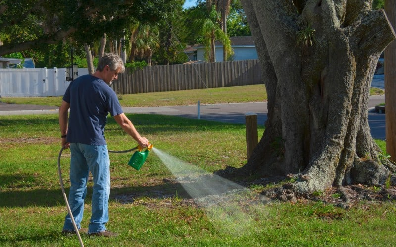 Weed Killers Safe For Dogs Reviews