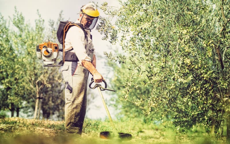 What Is The Best Mask for Mowing Grass