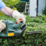 What is The Best Hedge Trimmer For Thick Branches