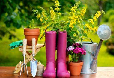 Top 18 Essential Gardening Tools