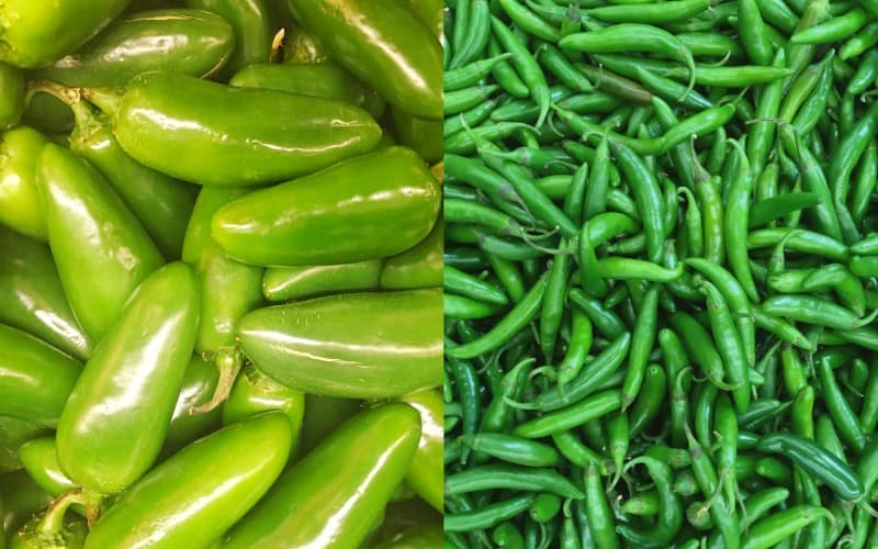 Difference Between Jalapenos and Serranos Peppers