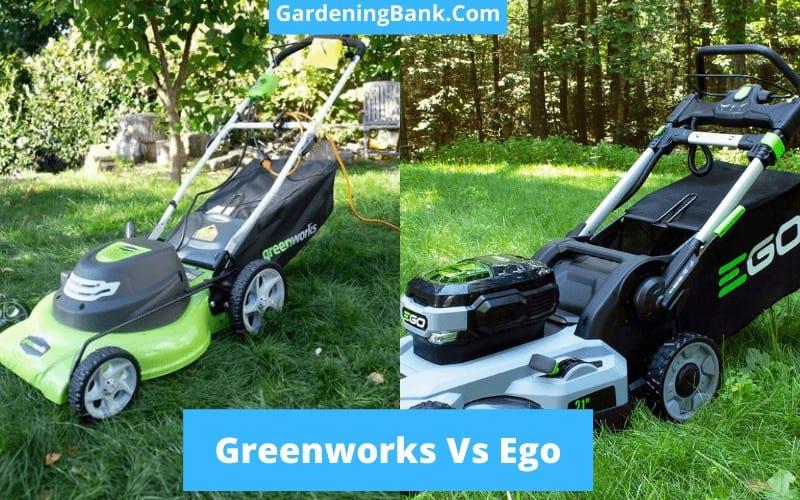 Greenworks Vs Ego