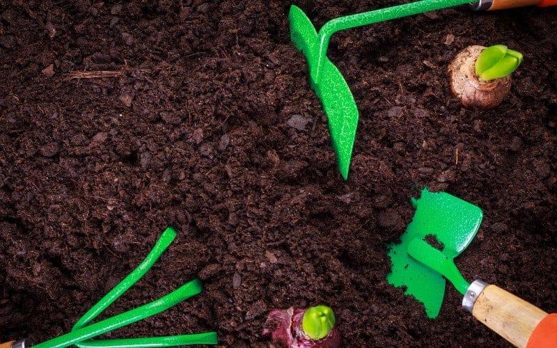 Potting Soil Vs Topsoil For Grass