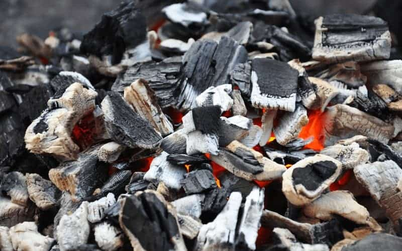 Differences Between Horticultural Charcoal and Activated Charcoal